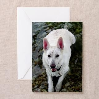 White German Shepherd Dog Store : White German Shepherd Store