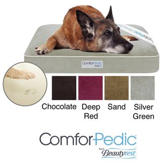 Simmons Comforpedic Deluxe Orthopedic Pet Bed (35 inches x 44 inches)