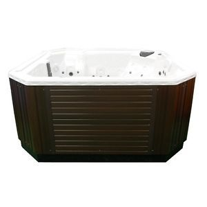 6 Person Deluxe Emerald Brand Spa Hot Tub Jacuzzi 110/220V  2 Pumps and 35 Jets