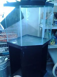 36 gallon corner bowfront aquarium for 55 gallon corner fish tank