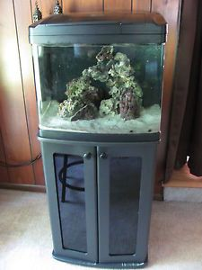 92 gallon corner bowfront fish tank w stand reef ready drilled for Bio cube fish tank