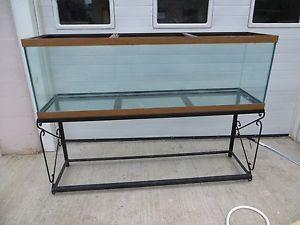 54 gallon corner fish tank for 125 gallon fish tank stand
