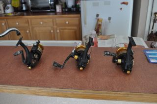 3 Penn Light Tackle Saltwater Spinning Reels