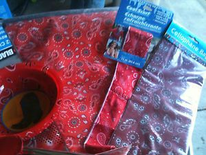 Lot of Bandanna Western Party Supplies Bags Bowls Table Fabric Lanterns Bonus