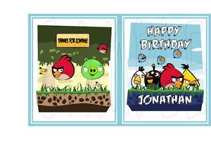 20 Angry Birds Coloring Books Party Favors Plus 2 Free Birthday
