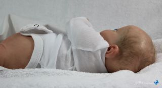 HBN A Special Cause Reborn Baby w Down Syndrome Anatomical Torso A Stoete