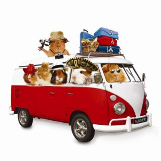 Funny Guinea Pig Any Occasion Card Summer Holiday in VW camper Van New
