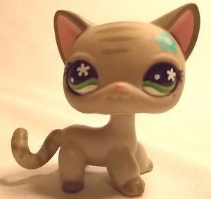 Littlest Pet Shop Gray Striped Cat 483 Green Eyes Cozy Care Flower