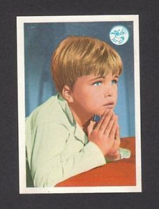 Gentle Ben Clint Howard Star Trek Vintage 1960s TV Show Card from Spain