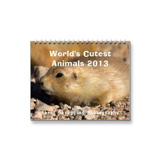 World's Cutest Animals 2013 Wall Calendars