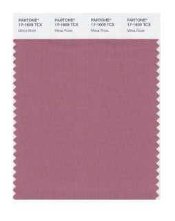 Pantone 17 1609 TCX Smart Color Swatch Card, Mesa Rose: Home Improvement