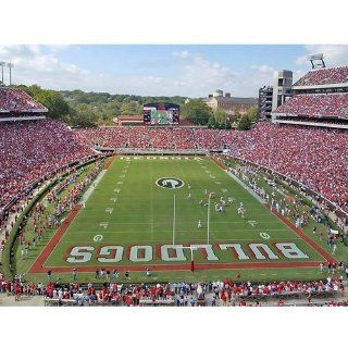 NCAA Georgia Bulldogs 18'' x 24'' Unframed End Zone Stadium Print: Office Products