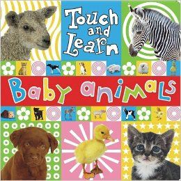 Touch and Learn Baby Animal (Touch and Learn (Make Believe Ideas)): Jane Horne: 9781846102783: Books