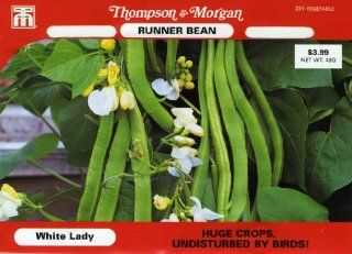 Thompson & Morgan 231 Bean Runner Bean 'White Lady' Double Seed Packet : Vegetable Plants : Patio, Lawn & Garden